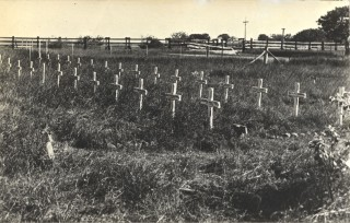 Dutch refugee cemetery - Town Beach, Broome